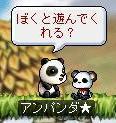 パンダ1.jpg