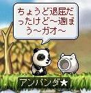 パンダ3.jpg