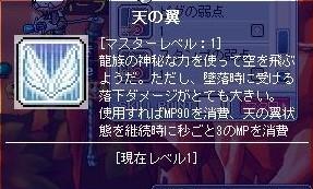天の翼.jpg